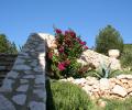 eden-garden