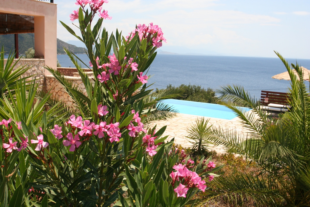 villa Rising Sun pool